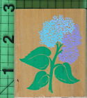 Posh Impressions Hydrangea rubber stamp by Rubber Stampede