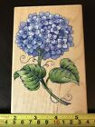 Rubber Stampede Hydrangea Stem rubber stamp NEW