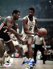Bill Russell Authentic Autographed Signed 8x10 Photo Boston Celtics PSA DNA