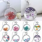Chic Silver Natural Real Dried Flower Round Glass Pendant Necklace Jewelry Gift