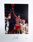 Scottie Pippen Autographed Signed 16x20 Matted Photo Chicago Bulls PSA DNA