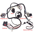 GY6 150CC Go kart ATV WIRE HARNESS ASSEMBLY CDI Switch Electric