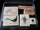 stampin up rubber stamp set autumn days nature 6 stamps total