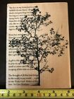 Stampendous Tree Poem rubber stamp NEW