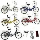 Shimano Adult 24 3 Wheel 7 Speed Tricycle Trike Bicycle Bike Cruise With Basket