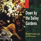 Down By the Salley Gardens, New Music