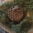New Primitive/Country BLACKENED BEESWAX BEE HONEYCOMB