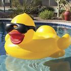 Inflatable Swimming Pool Float Kids Adults Duck Cup Holders Handles Pool Games