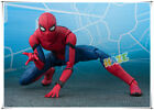 Ultimate Guide to Spider-Man Collectibles 76