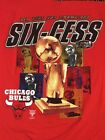 Chicago Bulls Collecting and Fan Guide 40