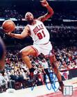 Dennis Rodman Cards and Memorabilia Guide 35