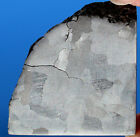 Meteorites Iron Meteorite 435g Polished and Etched Part Slice