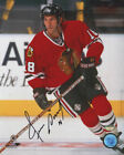 Chicago Blackhawks Collecting and Fan Guide 79