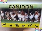 1 1000 Tablets Canidon Dog Dewormer Wormer 100 effectIve EXP02 2022