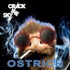 CRACK THE SKY Ostrich RECENT CD With JOHN PALUMBO  SEALED