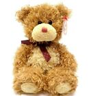 Ty Store Exclusive Beanie Baby ~ BEARY MUCH the Bear ~Plush Beanbag Toy~ MWMTs
