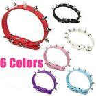 Wholesale Lot x 6 Spiked Dog Collars pet supplies
