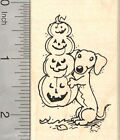 Halloween Dachshund Dog Rubber Stamp with Long Jack O Lantern H25520 WM