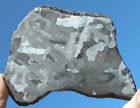Meteorites Iron Meteorite 204g Polished and Etched Large Complete Slice