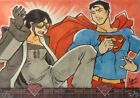 2013 Cryptozoic Superman: The Legend Trading Cards 6