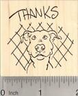 Thanks Pitbull Dog Rubber Stamp Thank you H19101 WM