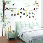 NEW Family Tree Wall Decal Sticker Large Vinyl Photo Picture Frame Removable US