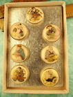 Beautiful Set of the Seven Gods Satsuma Picture Buttons Original Box