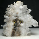 181g Natural Crystal ClusterSpecimen StoneHand Carved The Owl Animals