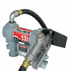 Fill Rite SD1202G 12 Volt DC Motor Fuel Transfer Pump with Hose  Manual Nozzle