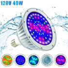 Color Changing LED Inground Pool Light 120V 40W for Pentair and Hayward Fixture
