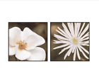 Flower Daisy Wall Art Set Tempered Glass Home Room Decor Ready To Hang