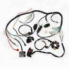 250cc Wire Harness Complete Kit 2 Hole Magneto Relay Ignition CDI Stator GO KART