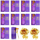 Luxury 24k Gold Plated Foil Rose Flower Dipped Best Valentines Day Gift For Her
