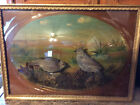Outstanding 100 year old Bubble Glass Taxidermy Quail Diorama Museum Display