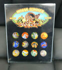 12 MINT JABO Indian Summer Marbles Another Great Set Vibrant in Box