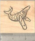 humpback whale Rubber Stamp Wood Mounted J8201