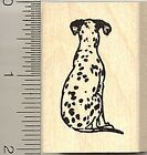 Dalmatian dog rubber stamp D9018 wood mounted Dalmation