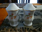 Baum Brothers Bros TRELLIS Salt & Pepper Shakers White ribbed with flowers