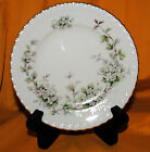 Franconia K & A Krautheim Hawthorn 8 BREAD & BUTTER PLATES Selb Bavaria Germany