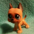 Littlest Pet Shop Caramel Tan Great Dane Dog Purple Eyes LPS 244
