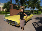 Dodge  Challenger 1970 DODGE CHALLENGER 1970 dodge challenger matching with build sheet