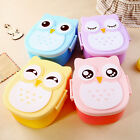 Hot Owl Bento Lunch Box Plastic Cute Cartoon Lunch Box Food Contain Bento Box