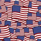 American Patriotic Cotton Fabric! USA, Pride, Eagle, Flag, Stars! Prices Vary!