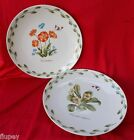 Set of (2) Royal Norfolk Plates Flowers and Butterflies