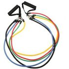 Fitness Resistance Bands Exercise Training Rope Workout Equipment With Nylon Bag