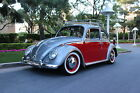 Volkswagen  Beetle Classic CLASSIC BODY OFF RESTORATION EVERYTHING NEW 66 BEETLE AWESOME SHOWPIECE