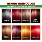 Henna Hair Color  100 Organic and Chemical Free Henna for Hair Color Hair Care