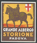 Grand Hotel Storione PADOVA Italy  vintage luggage label