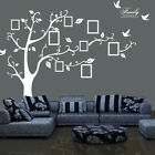 Family Tree Bird Wall Sticker Photo Picture Frame Removable DIY Room Decal White