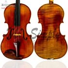 Sandro Luciano Viola West Cost String 16
